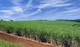 Biens à vendre - Terrain agricole - fond-du-sac